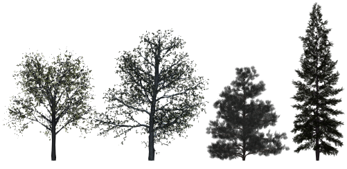High Surface Count Trees